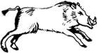 Kiaulė